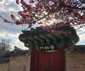 flowers, korean, and palace image