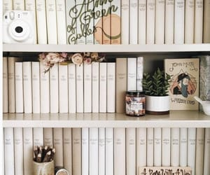 article, books, and bookshelves image