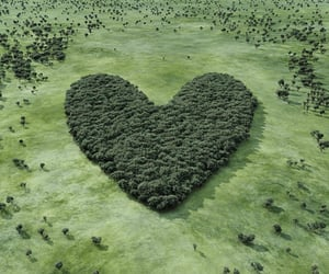climate change, green, and heart image