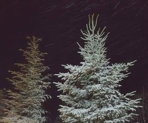 Christmas time, nature, and snow image