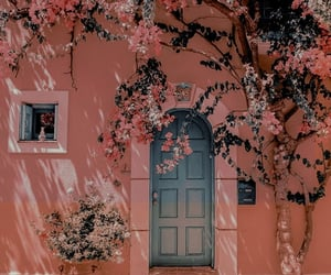 flowers, door, and blue image