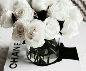 flowers, chanel, and fashion image