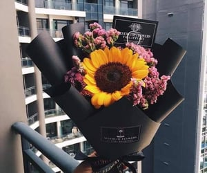 flowers, sunflower, and pink image