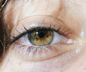 eyes, yellow, and green image