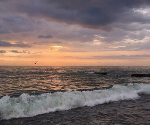 beautiful, ocean, and photo image