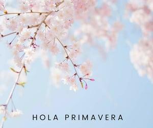 hola, primavera, and spring image