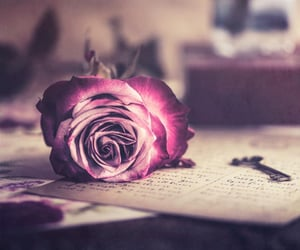 book, flowers, and keys image