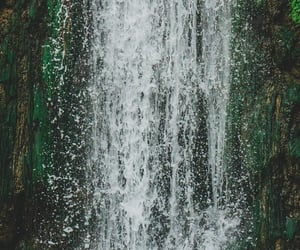flow, green, and nature image