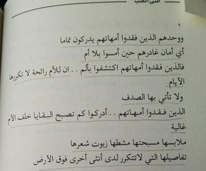 شهرزاد, اقتباسات اقتباس, and عبارة عبارات image