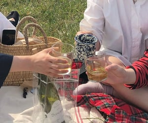 drinks, green, and picnic image