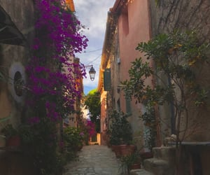 alley, flowers, and france image