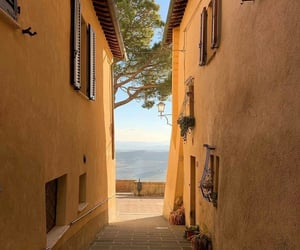 golden, Houses, and Sunny image