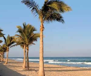 beaches, escape, and paradise image
