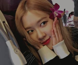 gif, park chaeyoung, and blackpinkgifs image