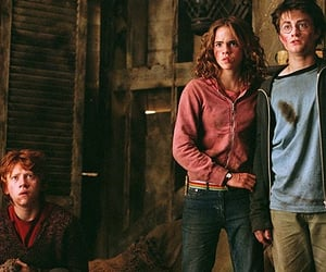 family, gryffindor, and ron weasley image
