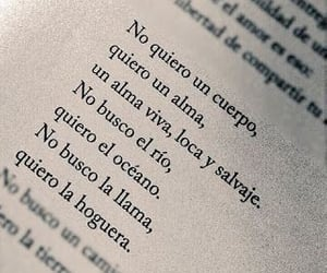 book, amor, and frases image