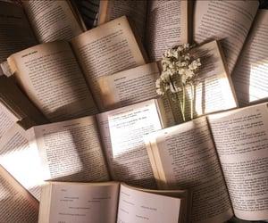 article, reading, and quarantine image
