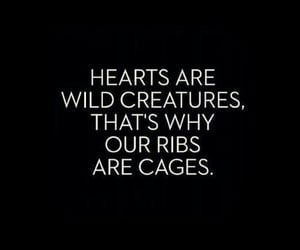 quotes, cage, and hearts image