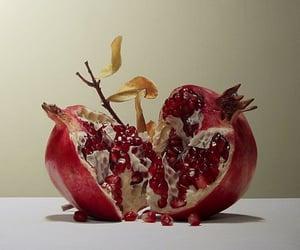 pomegranate, art, and fruit image