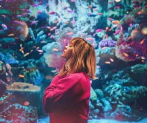 aesthetic, aquarium, and beauty image