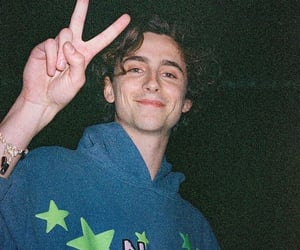 timothee chalamet, actor, and aesthetic image