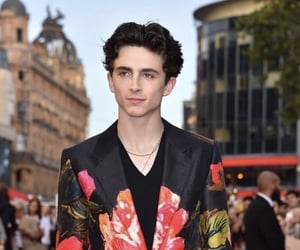 boys, photography, and chalamet image