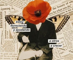 aesthetic, Collage, and frases image