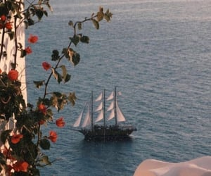 flowers, ship, and ocean image