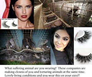 Adriana Lima, animals, and make up image