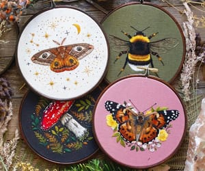 bee and butterfly image