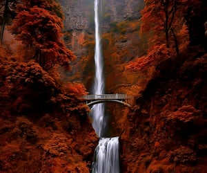 autumn, waterfall, and aesthetic image
