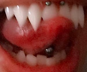 salvatore, series, and vampires image