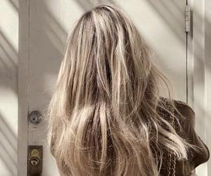 blonde hair, brown hair, and hair image