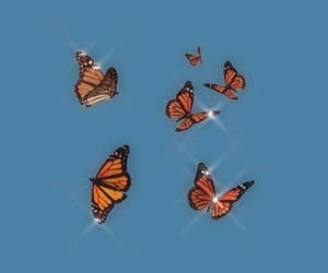 iphone wallpaper, butterfly wallpaper, and iphone background image