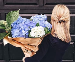 flowers, blue, and summer image
