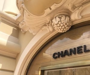 chanel, aesthetic, and beige image
