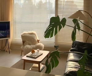 aesthetic, design, and interior image