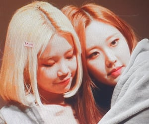 girlfriends, lq, and momoland image