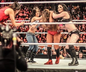 paige, aj lee, and nikki bella image