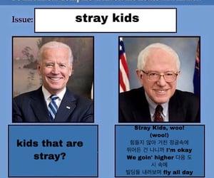 funny, meme, and bernie image