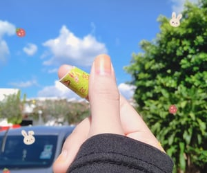 band aid, bunny, and strawberry image