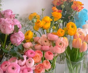 flowers, beautiful, and bright image