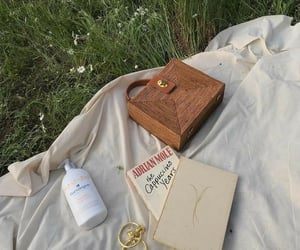 aesthetic, book, and picnic image
