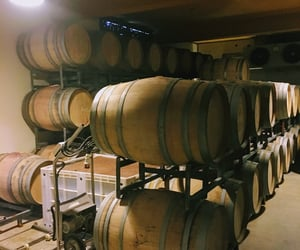 argentina, cellar, and travel image