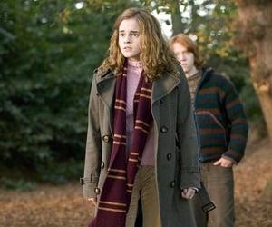 hermione image