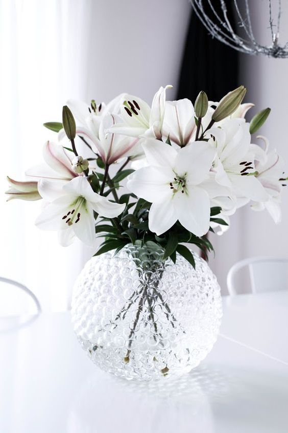 flowers, white, and lily image