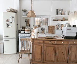 aesthetic, cat, and kitchen image
