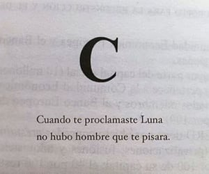 frases, book, and luna image