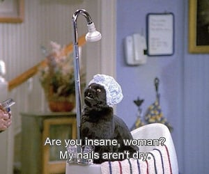 funny and salem image