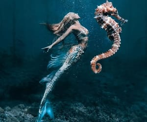 mermaid, ocean, and beautiful image